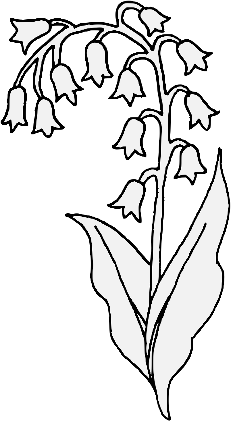 lily of the valley balzac pdf